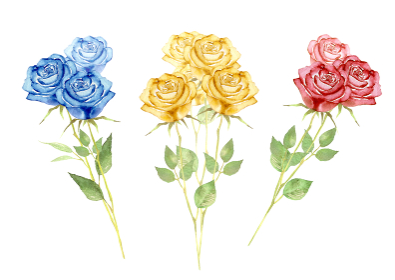 薔薇 花束 赤 青 黄色 水彩 イラスト