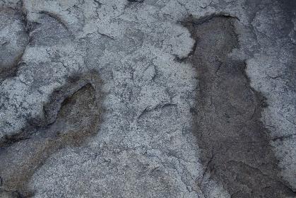庭石の表面