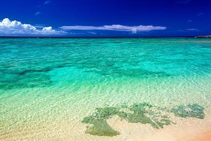 鹿児島県・与論島 夏のビーチの風景
