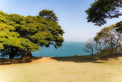 木陰のブランコとエメラルドグリーンの海