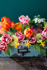Cheerful bright spring flowers