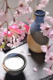 枝垂れ桜と日本酒