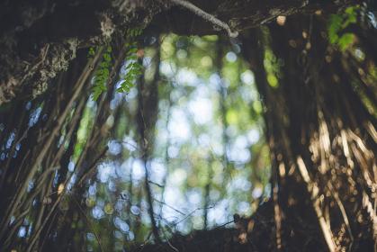 沖縄県の離島宮古島市平良の史跡 大和井(ヤマトガー)隆起珊瑚礁の島の貴重な井戸の石造遺跡