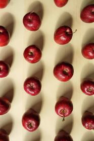 テーブルの上に整列した姫リンゴ 2 縦位置