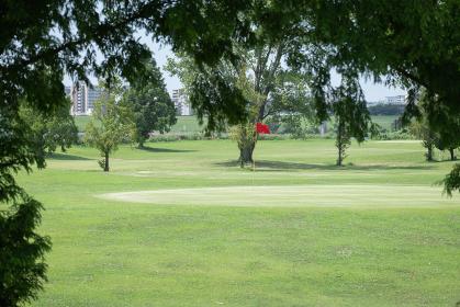 風が吹き抜ける夏のゴルフ場 荒川河川敷 川口市