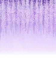 紫色の藤の花 グラデーション 縦
