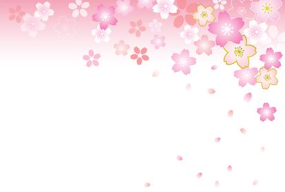 桜背景 ハガキテンプレート