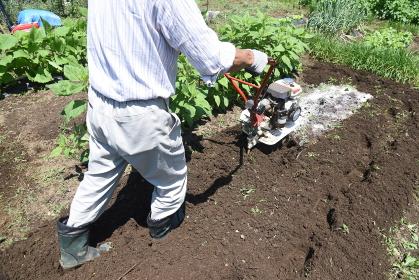 家庭菜園・ミニ耕運機で土づくり作業