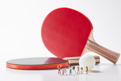 フィギュア 卓球を応援する観客