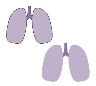 悪い肺 アイコン