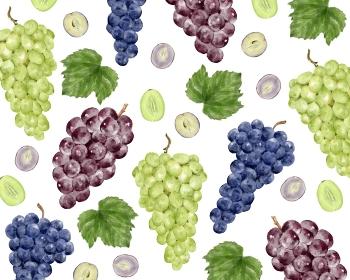 3種類の葡萄 柄 水彩風イラスト
