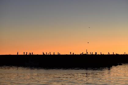 防波堤の釣り人