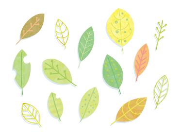 手描き 葉