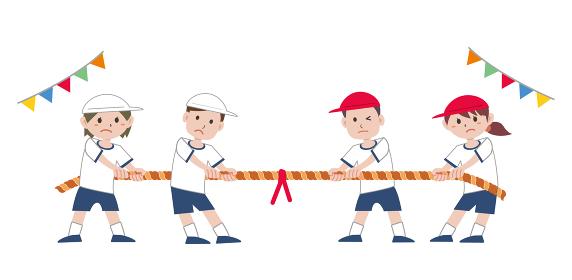 体育祭 運動会 綱引き
