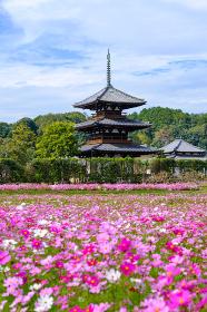 法起寺 (2020/11/06撮影)