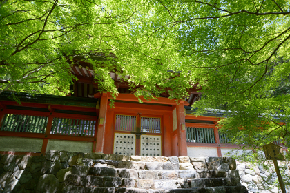 新緑の神護寺 多宝塔入口の門 京都市高雄