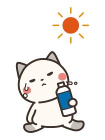 熱中症対策で水を飲む猫