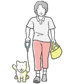 犬の散歩をする中年女性