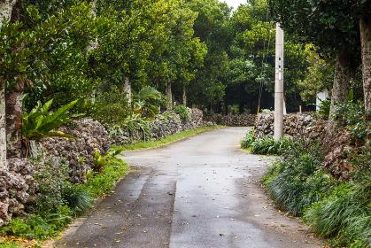 日本最南端、沖縄県波照間島の風景