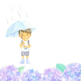 傘をさした男の子とあじさい 水彩イラスト