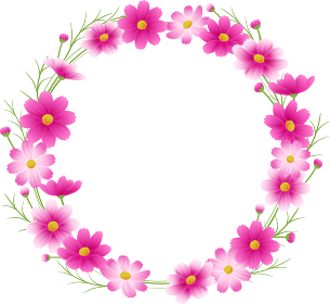 ピンクのグラデーションのコスモスの丸フレーム、リース、秋イメージ