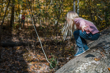 Little girl climbing on tree outside in forest