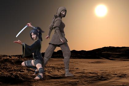太陽が沈む中に顔を隠し振り返るくノ一と低い姿勢で刀を構えるくノ一が任務を遂行する