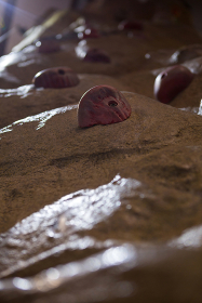 Close-up of wall with footholds