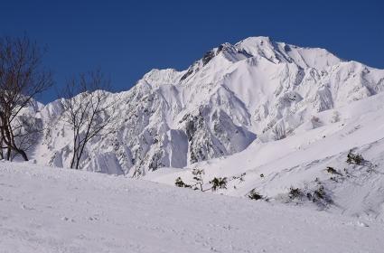 白馬 八方尾根から眺める五竜岳