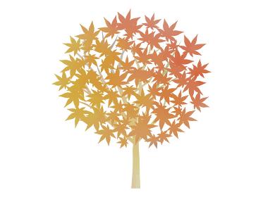 紅葉の木の水彩イラスト