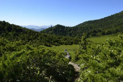 尾瀬・7月の青空(燧ケ岳・福島県・日本)