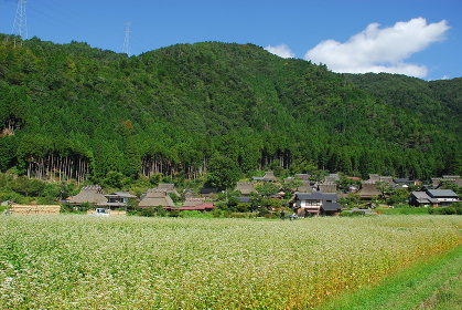 Miyama;Kyoto;Japan