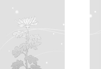菊の花の喪中はがき(モノクロ文字無し)