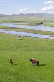 子馬を捕まえる遊牧民