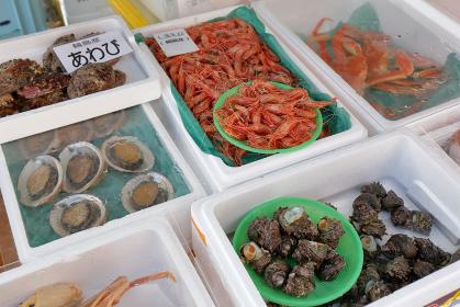 朝市の店頭に並べられた魚介類