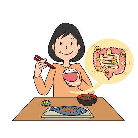 朝ごはんを食べて腸を元気にするイメージ