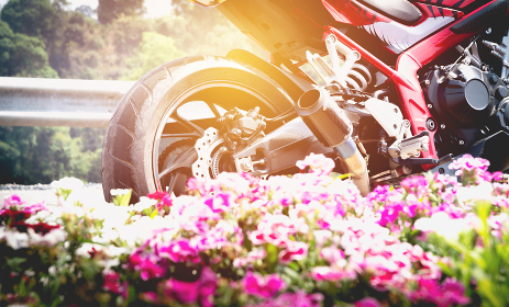 A motorcycle parking on the road right side and pink flower.