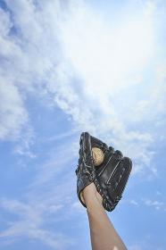 グローブで野球のボールを取る手