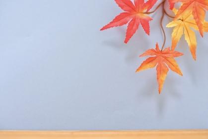 秋のテンプレート / カラー背景