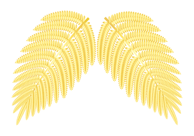 シダ植物の葉 ウラジロ イラスト ベクター