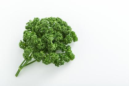 緑黄色野菜のパセリ