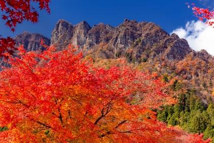 群馬県・富岡市 妙義山の紅葉